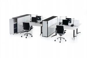 Holmris genese zit-sta bureau