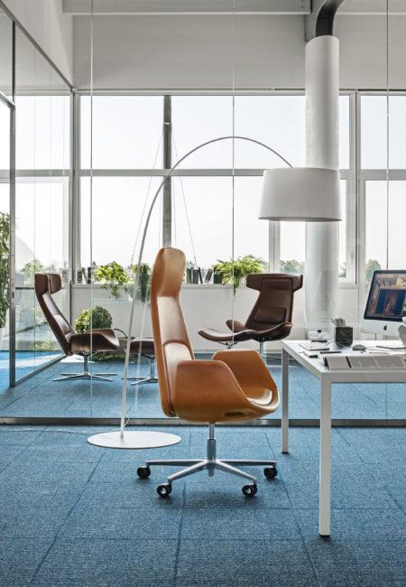 Wize office shape